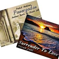 """کار زیبای نواب جلیل در دو قطعه موسیقی """"واگذاری به عشق"""" و """"پاسارگاد"""""""