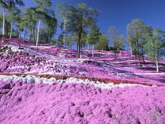 رنگی ترین و زیباترین مکان های دنیا