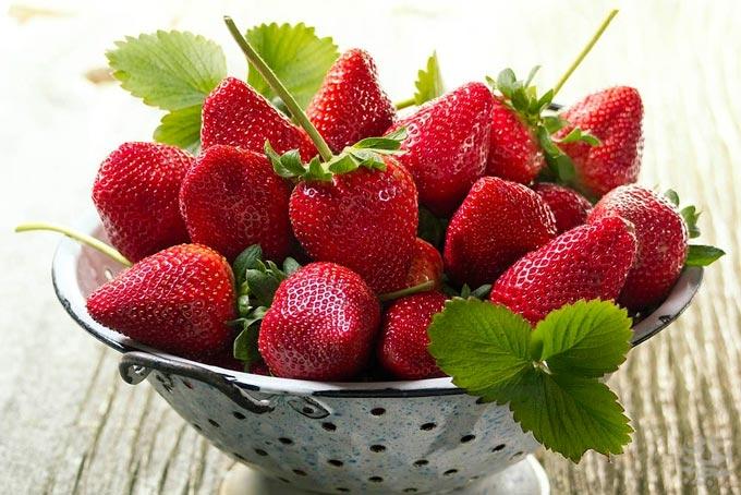 تصاویری از میوه های بهاری جذاب و خوشمزه