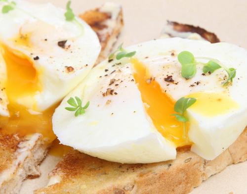 تخم مرغ جیبی