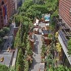 تصاویر طراحی باغ بامهای زیبا و روف گاردن