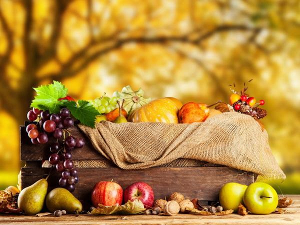 مفید و مضرهای پاییزی