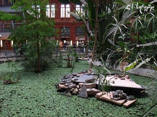 باغ گیاه شناسی داخل ایستگاه قطار مادرید