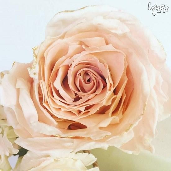 واقعیترین گلهای خوراکی
