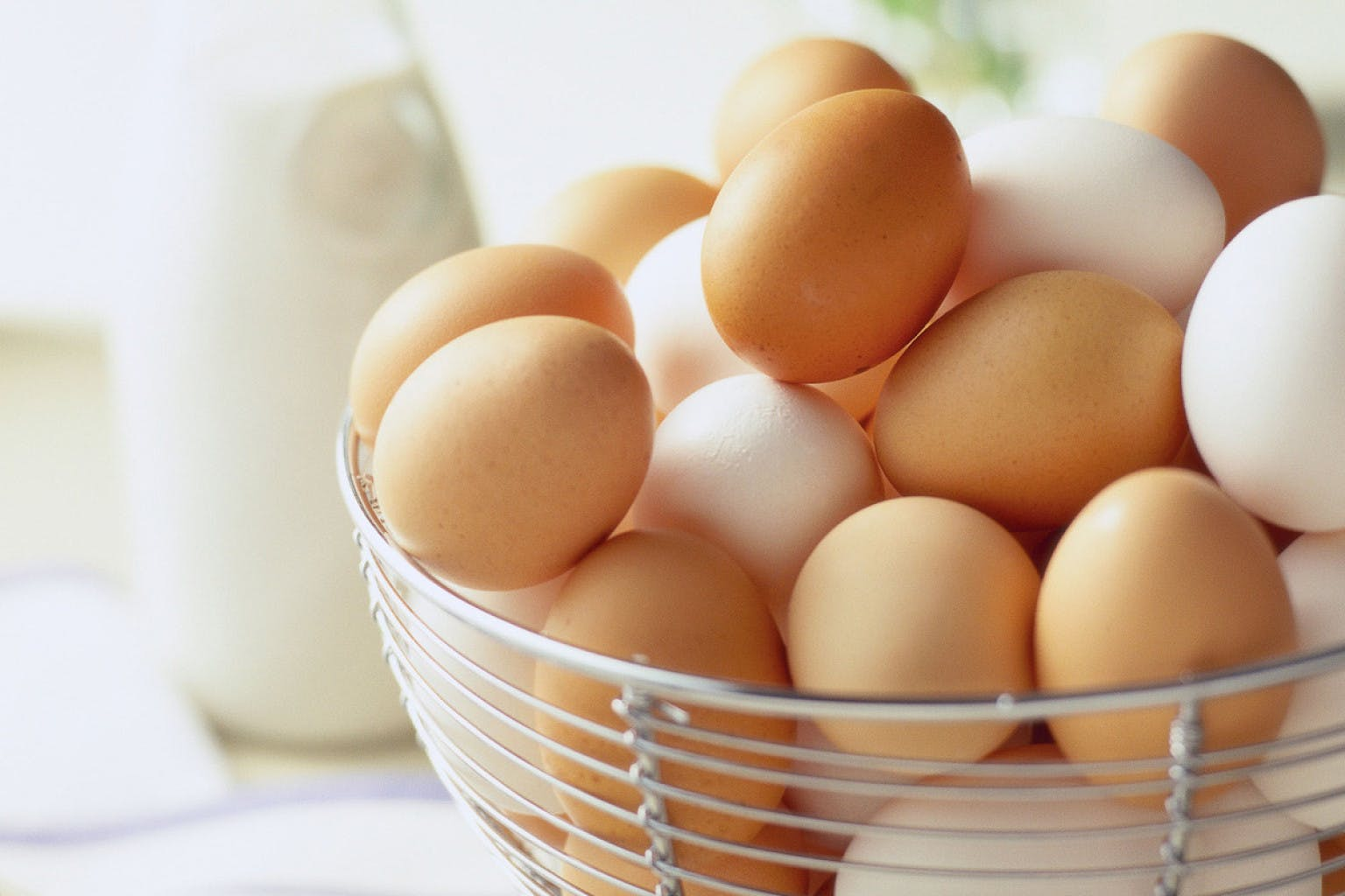 سفید یا قهوهای؟ کدام تخممرغ سالمتر است؟