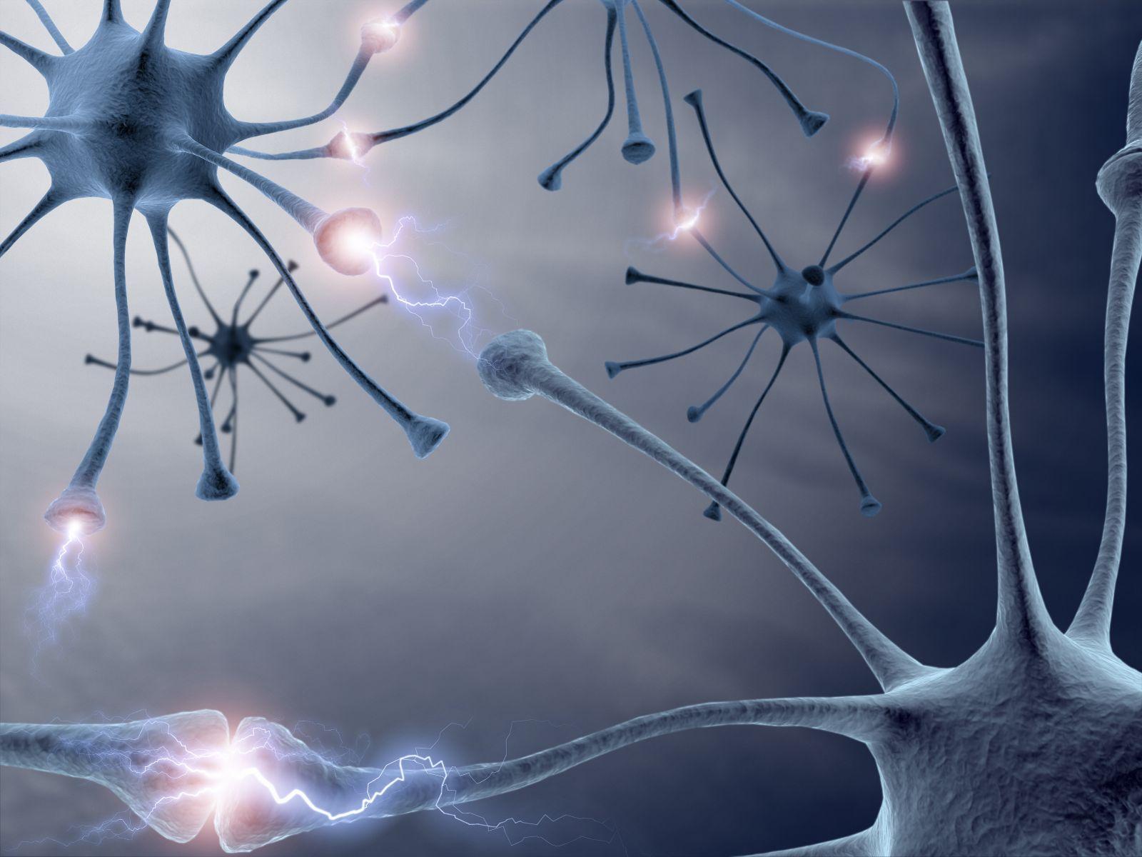 تقویت حافظه انسان با ایمپلنت مغزی!