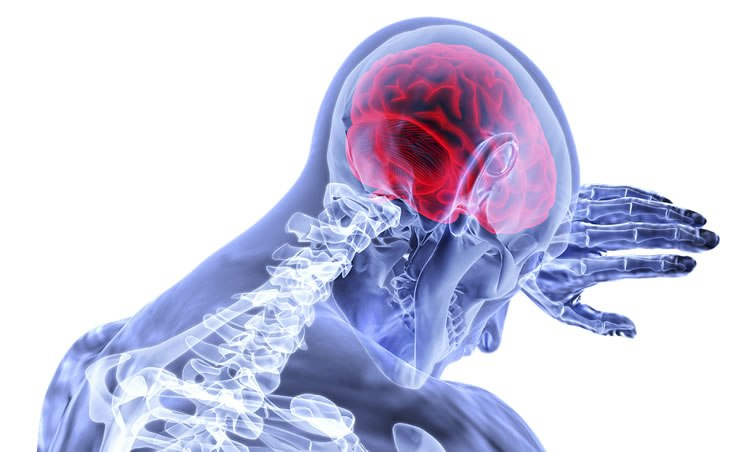 مغز چگونه به استرس دائمی عادت میکند؟
