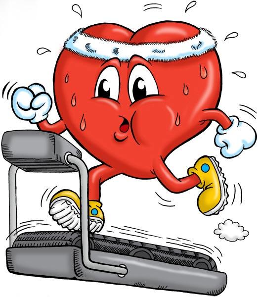 بهترین تمرینات ورزشی برای قلب شما