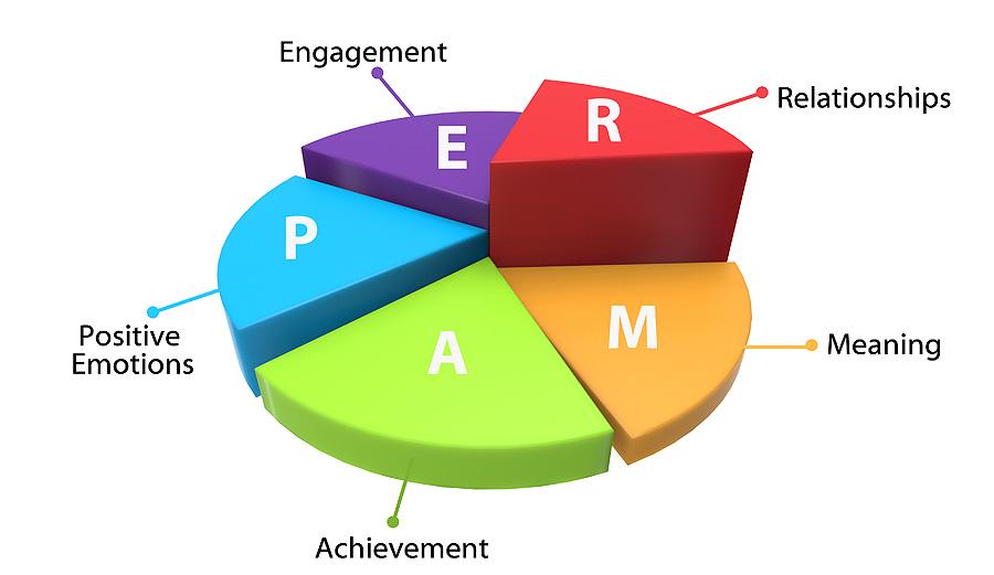 نظریه بهزیستی پرما (PERMA)