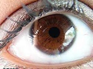 چرا چشم قهوهایها قابل اعتمادترند؟