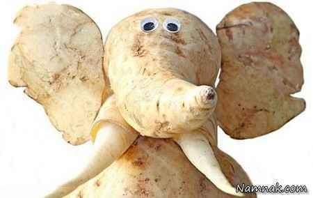 جالبترین عکسها از میوه هایی شبیه حیوان
