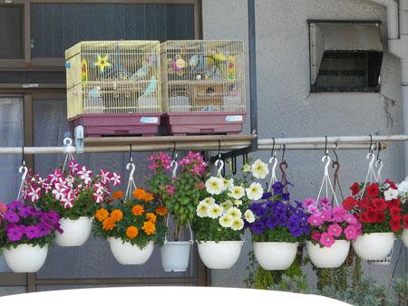 ایده های خلاقانه تزیین گلدان