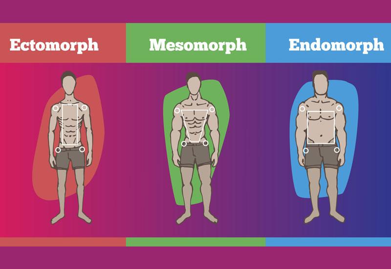 آیا میدانید چه نوع بدنی دارید؟