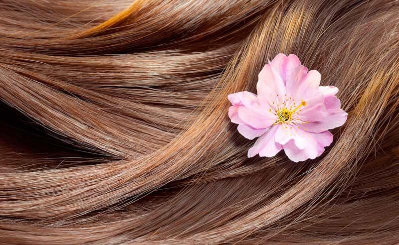 باید و نبایدهای مراقبت از مو