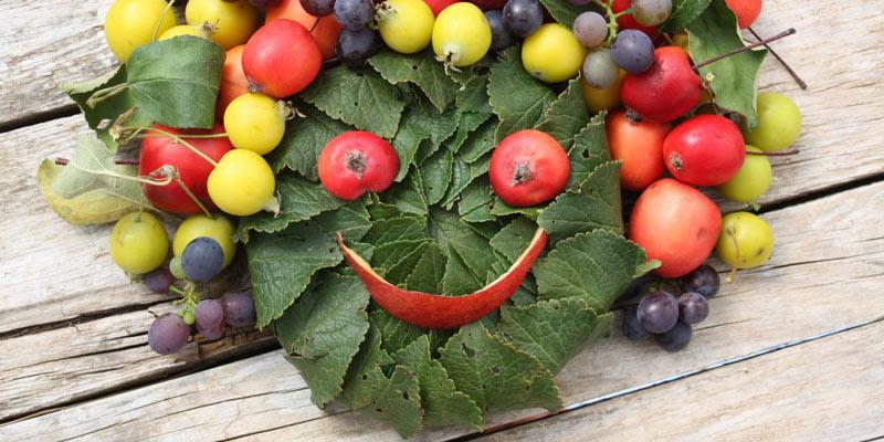 خوراکیها و تاثیر عجیب و غریبی در شادی