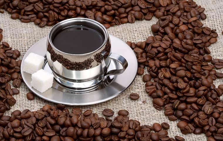 چگونه قهوه خود را بدون شیرین کننده میل کنیم؟!