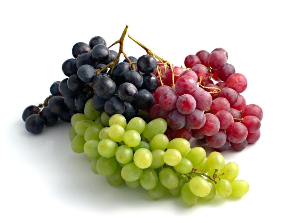 زبان خوراکی ها-اسم من انگور است!