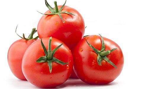 تاریخچه گوجه فرنگی