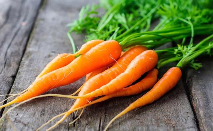 زبان خوراکی ها: اسم من هویج است