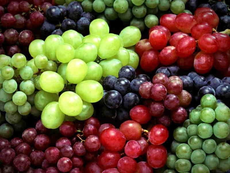 انگور و خواص آن