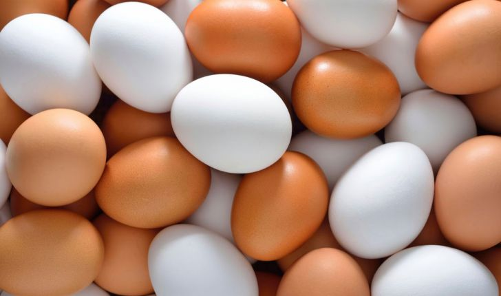 تخم مرغ خواص و کاربردهای آن