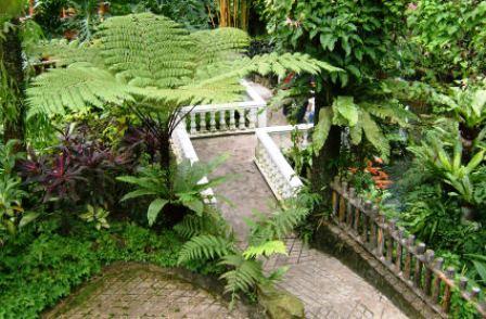 باغ پروانه های زیبا در مالزی