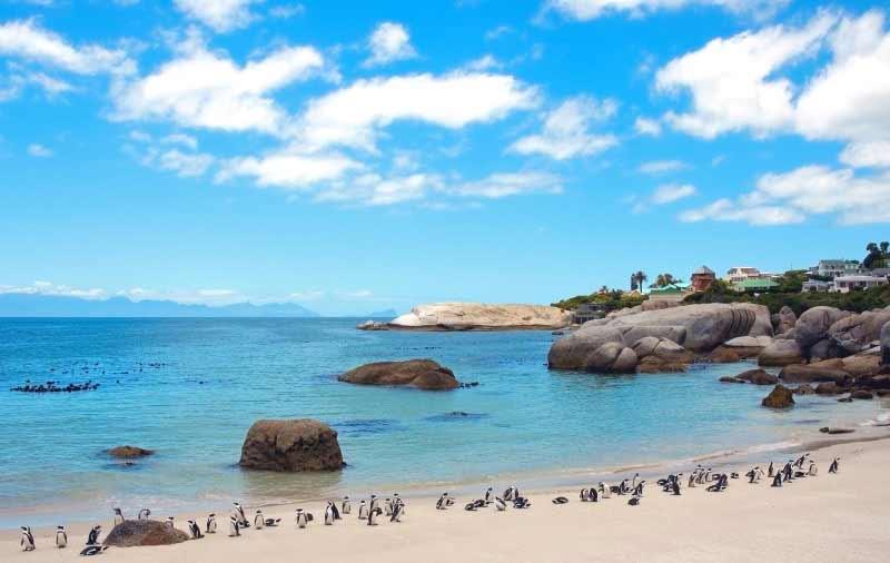 جاذبه های گردشگری و توریستی آفریقای جنوبی