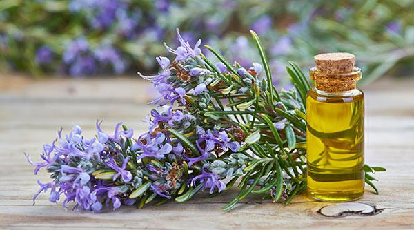 دانستنی های پزشکی 8 - گلها و روغن ها